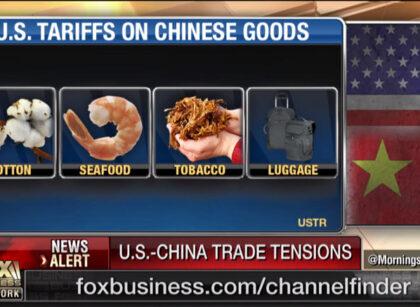 Trump tariffs 'necessary defense' against China: Peter Navarro